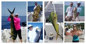 Fabulous Offshore Fishing In The Florida Keys